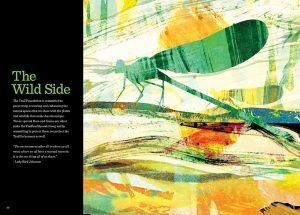 Pentagram_TTF_Brochure_Interior_Production_twit2